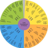 Wheel of Child Development